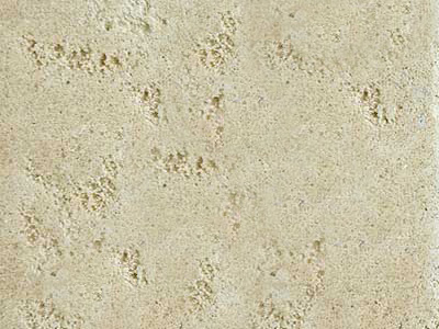 Oatmeal Travertine